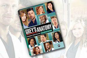 grey-anatomy