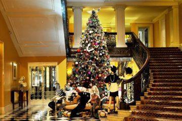 Waarom een kerstboom met kerst